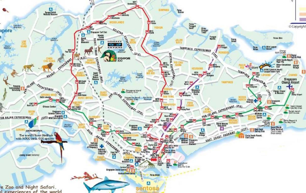 road map of Singapore
